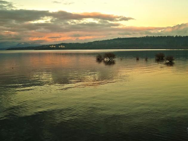 Atardecer junto al lago | Moisés Silva
