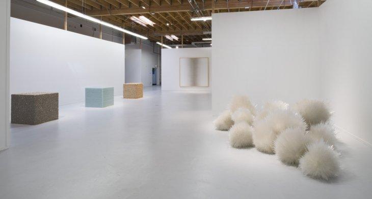 Pace Gallery | Tara Donovan