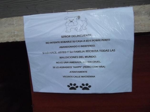 Roban casa a perrito enfermo | Carolina Segura