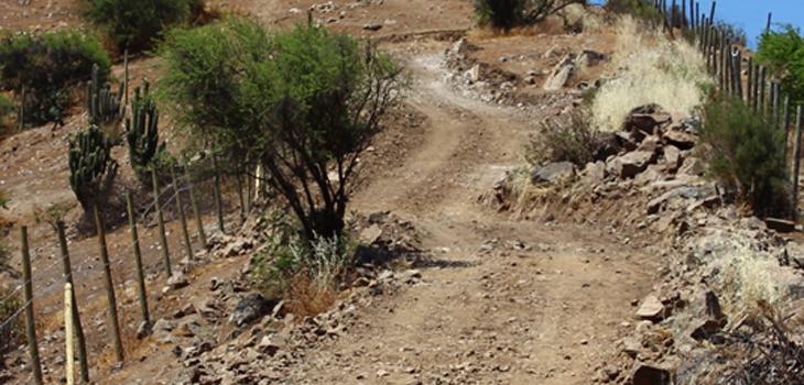 Vista del Camino que destruyó el sendero ceremonial prehispánico del Pucará de Chena, fotografía de Alexis López Tapia