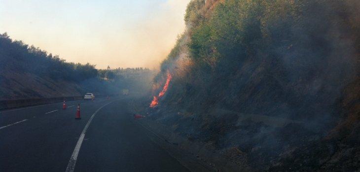 Incendio forestal   Constanza Reyes (RBB)