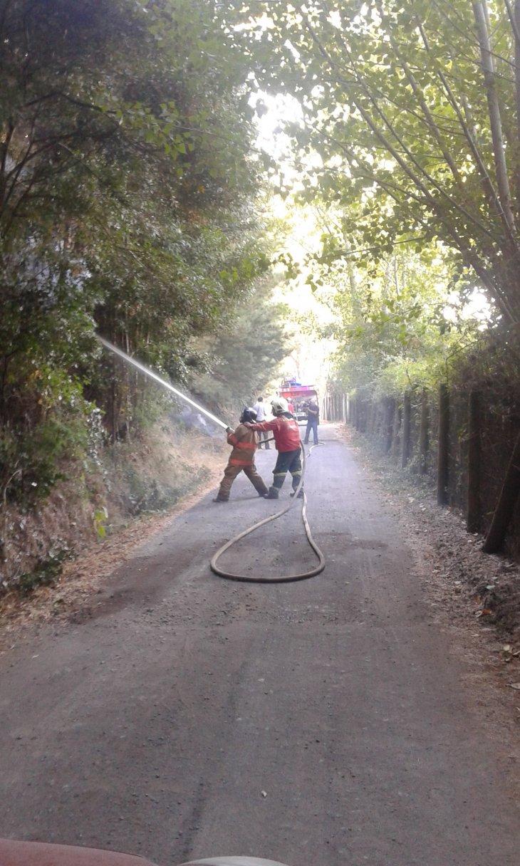 Incendio Forestal en Santa Juana | Andrea Parra