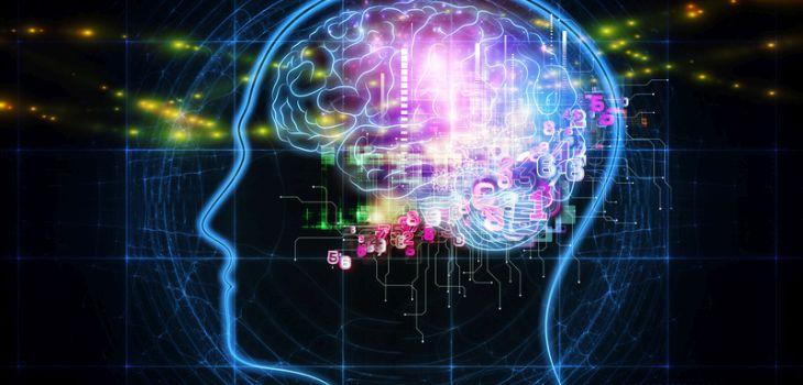 Reprograma tu cerebro para el éxito | Acción Preferente