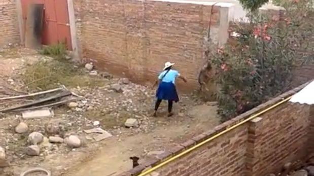 Mujer colgo a su perro para matarlo a pedradas en Bolivia