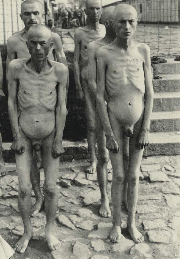 Prisioneros desnutridos | Francisco Boix