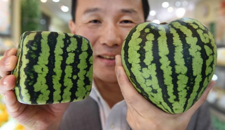 Toru Yamanaka | AFP
