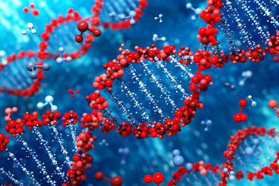 Una persona que secuencia su ADN puede decidir no querer saber sus datos o parte de ellos, pero puede solicitar que se transmitan a sus descendientes, en vida o cuando muera.