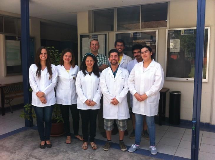 El equipo de académicos de FAVET que trabajan en los ensayos de la vacuna en ambientes controlados.