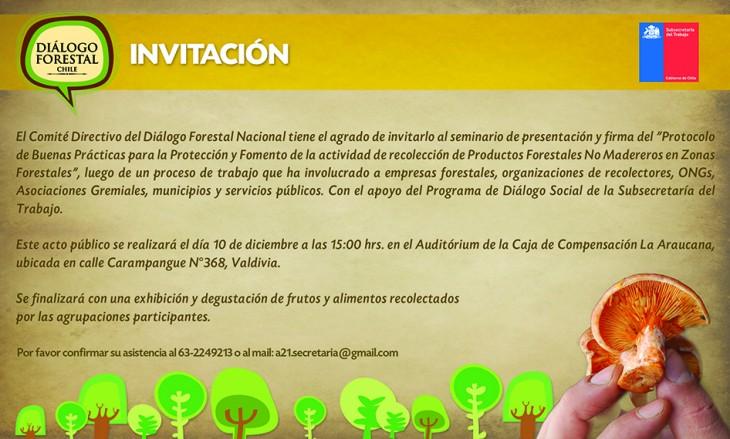 www.dialogoforestal.cl