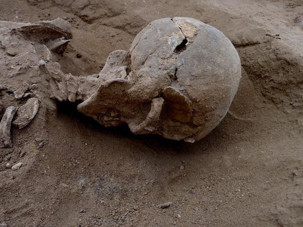 Algunos esqueletos presentaban roturas en cráneo, manos, rodillas o costillas |  Marta Mirazon Lahr
