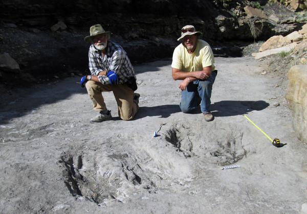 Los investigadores Martin Lockley (derecha) y Ken Cesta posan junto a los grandes rasguños de dinosaurio que descubrieron en el oeste de Colorado / Universidad de Colorado
