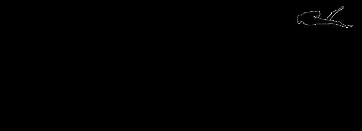 Wikimedia | Comparación de tamaño con el ser humano