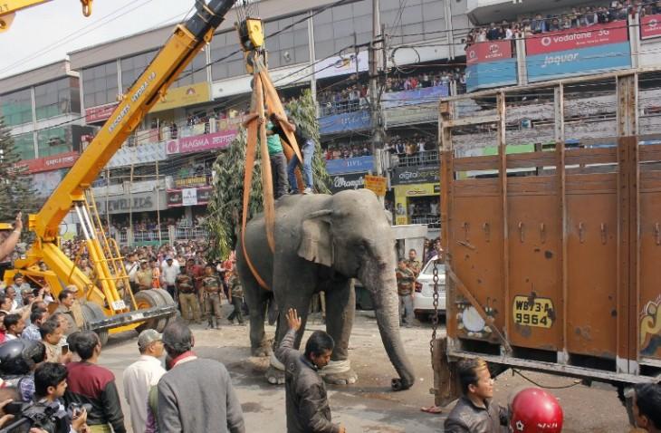 Diptendu Dutta | AFP