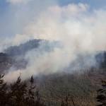 Incendios forestales han consumido más de 3.800 hectáreas en La Araucanía