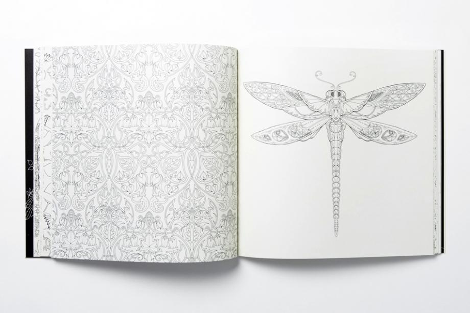 Enchanted Forrest | Johanna Basford