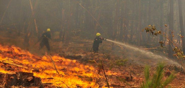 Resultado de imagen para incendios forestales chile