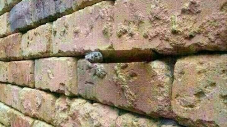¿Qué esconde la pared?