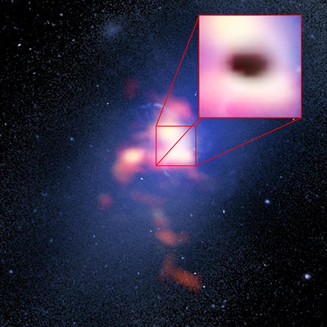 """Imagen compuesta de la galaxia más brillante del cúmulo Abell 2597. La imagen de fondo (azul) es del telescopio espacial Hubble. La imagen en primer plano (rojo) corresponde a los datos de ALMA, que muestran la distribución del gas de monóxido de carbono dentro y alrededor de la galaxia. El recuadro destaca los datos de ALMA correspondientes a la """"sombra"""" (en negro) producida por la absorción de la luz emitida en longitudes milimétricas por electrones que giran alrededor de intensos campos magnéticos generados por el agujero negro supermasivo de la galaxia. La sombra es una prueba de que las frías nubes de gas molecular están precipitando en dirección del agujero negro. Créditos: B. Saxton (NRAO/AUI/NSF); G. Tremblay et al.; NASA/ESA Hubble; ALMA (ESO/NAOJ/NRAO)"""