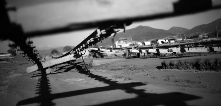 Naturaleza Reportaje|Mario Ruiz