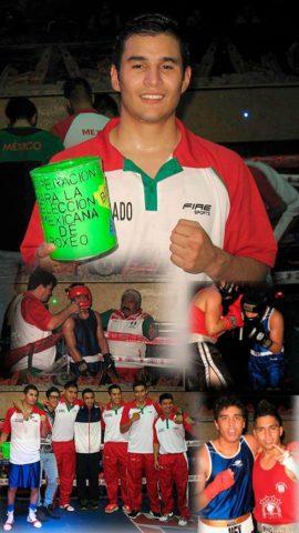Federación Mexicana de Boxeo