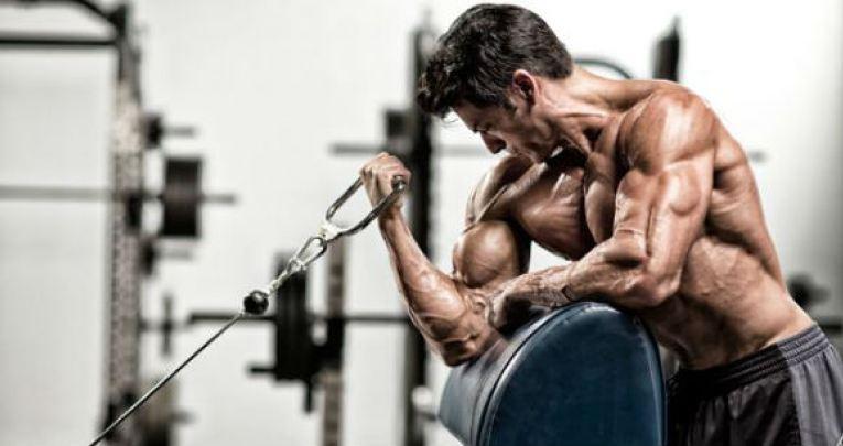 Ejercicio bíceps