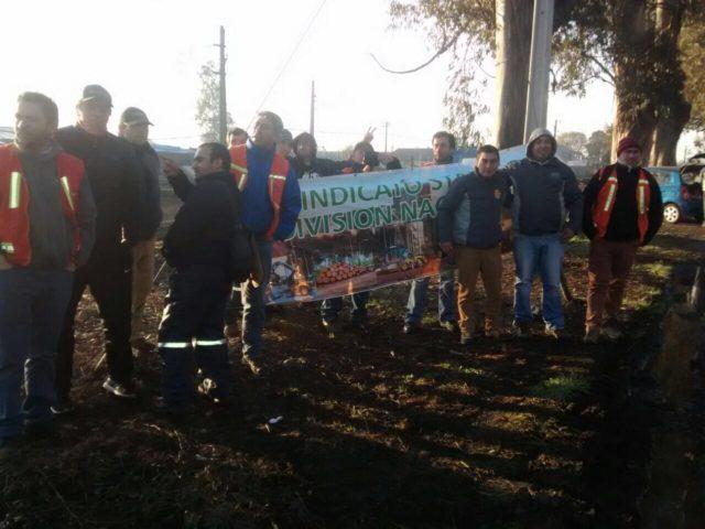 Trabajadores contratistas bloquean acceso a plantas de Forestal Mininco en Collipulli