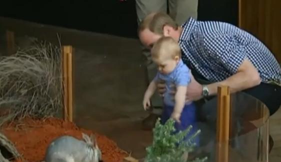 Príncipe William y su hijo