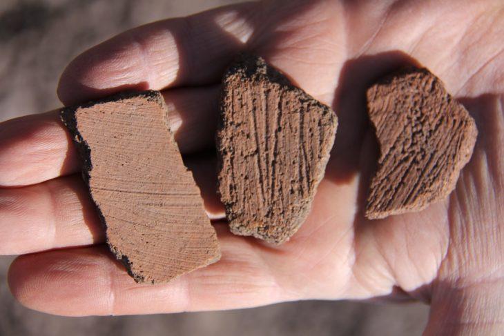 Una muestra de los restos cerámicos encontrados en el sitio.