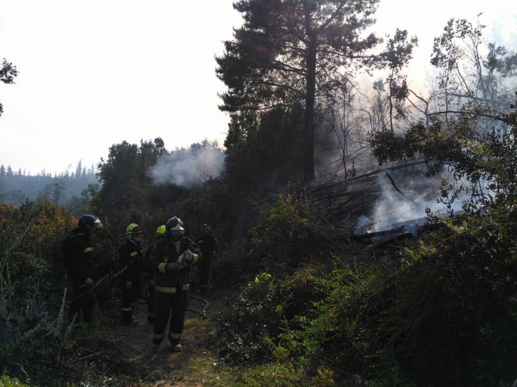 Incendio fundo El Llano Valparaíso