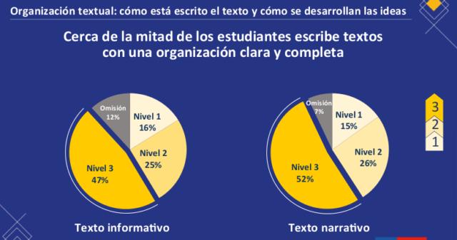 organizacion textual2