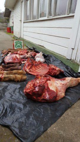 270 kilos de carne decomisada y 7 sumarios sanitarios tras fiscalización en La Araucanía