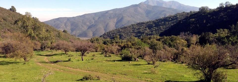 http://www.parcelas-curacavi.cl/