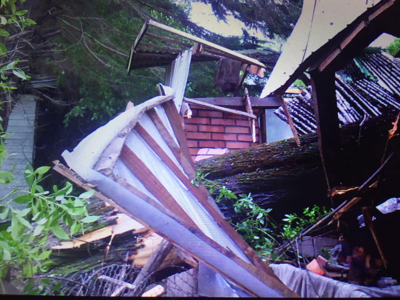 Casa resultó partida a la mitad tras caída de árbol en Angol a causa de fuertes vientos