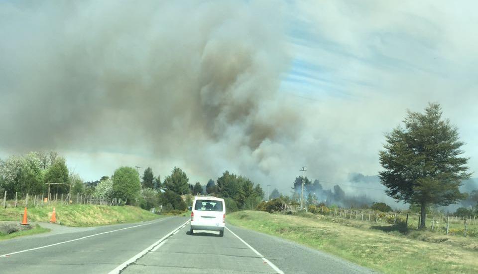 Alerta Roja en Ancud por incendio forestal