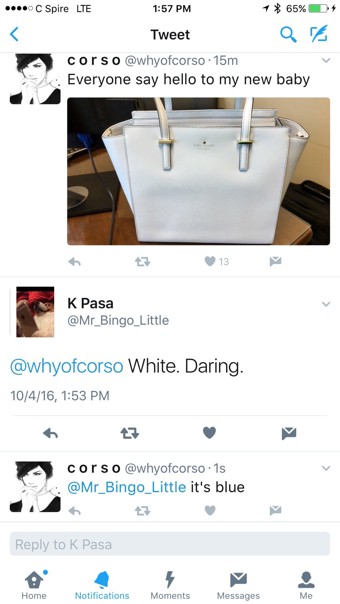 ¿De qué color es la cartera? Casual foto confunde a usuarios