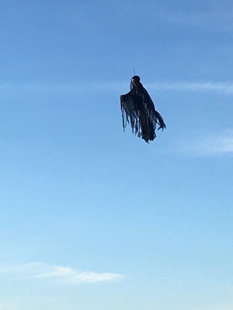 """Ingenioso hombre aterroriza a sus vecinos con un """"dementor"""" que construyó (y hasta vuela)"""