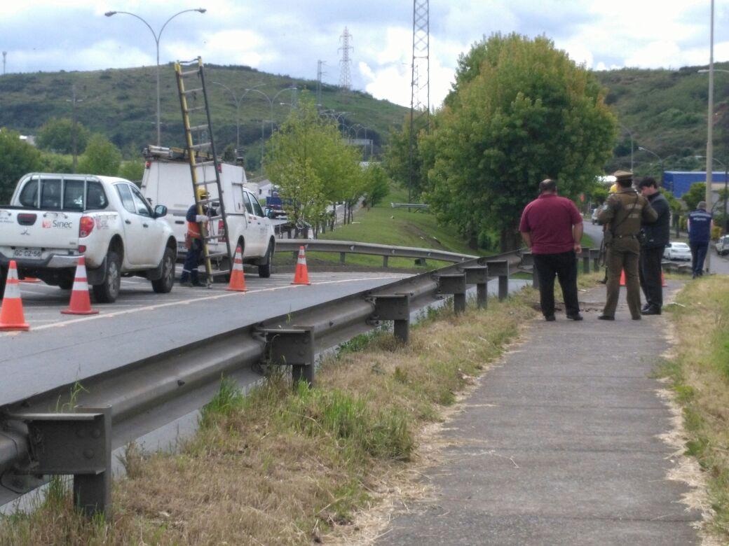 Caballo de Carabineros muere electrocutado en Concepción