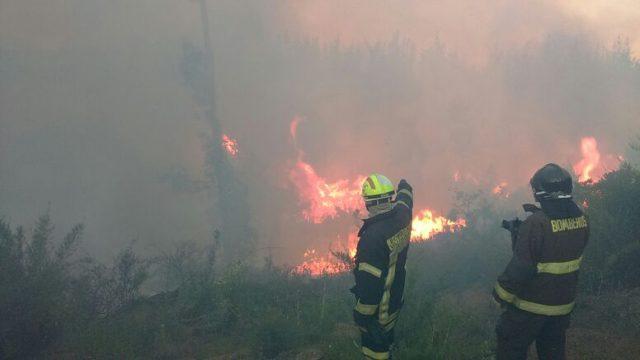 Camiones aljibes junto a bomberos intentan apagar incendio en sector Tranque de la Luz en Curauma, cerca de Valparaíso