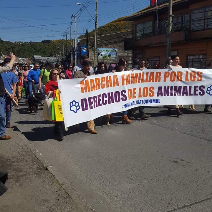 MARCHA ANIMALISTAS PUERTO MONTT