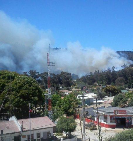 Incendio afecta a sector de Laguna Verde