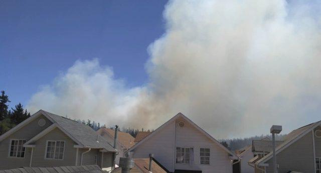 Incendio afecta a sector de Laguna Verde, visto desde las casas de la comuna
