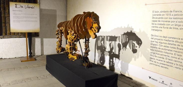 León de Da Vinci | Casas de lo Matta