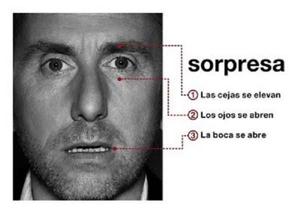 microexpresiones_lenguaje_corporal_sorpresa-1