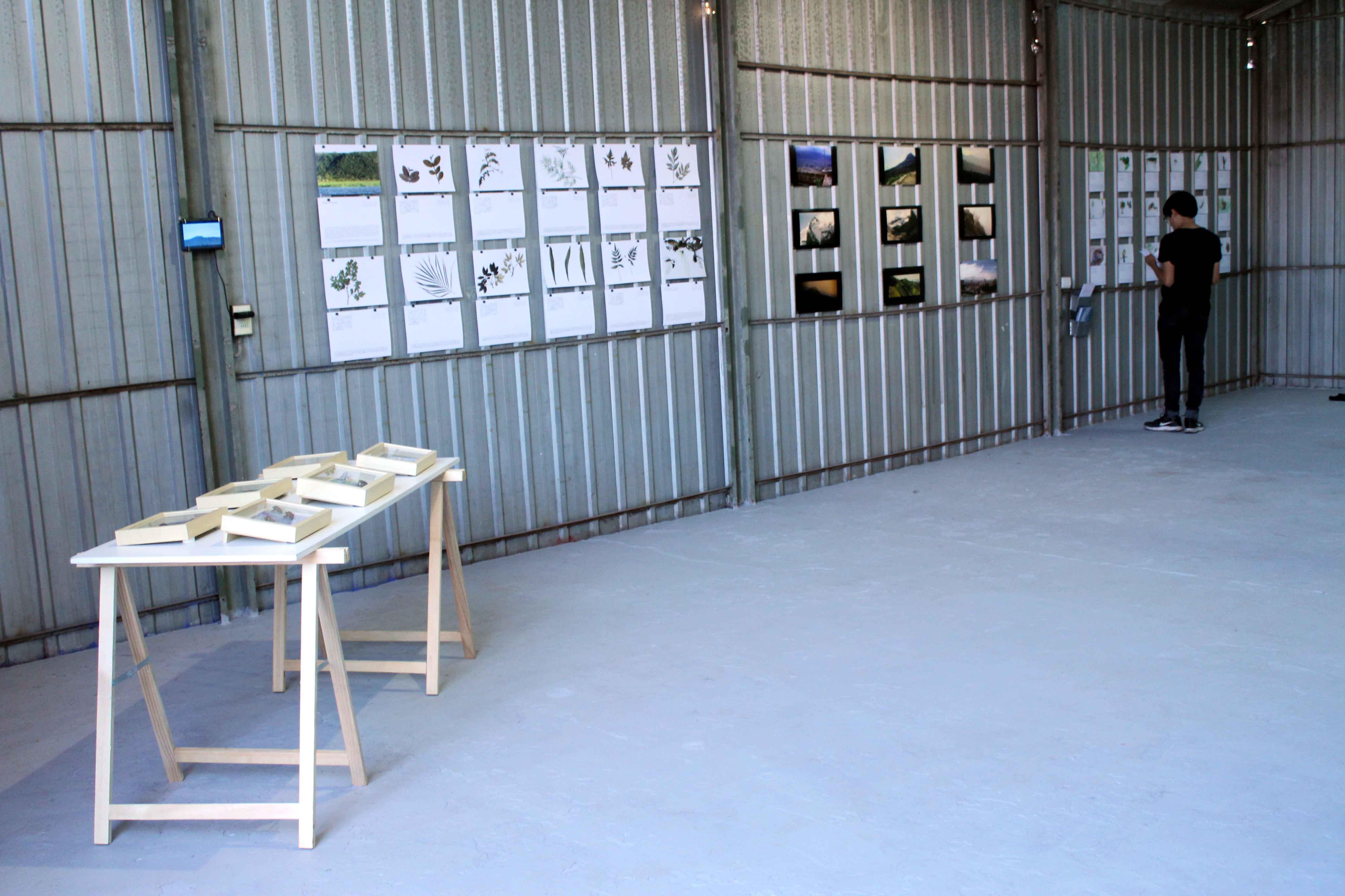 Imagen de la muestra