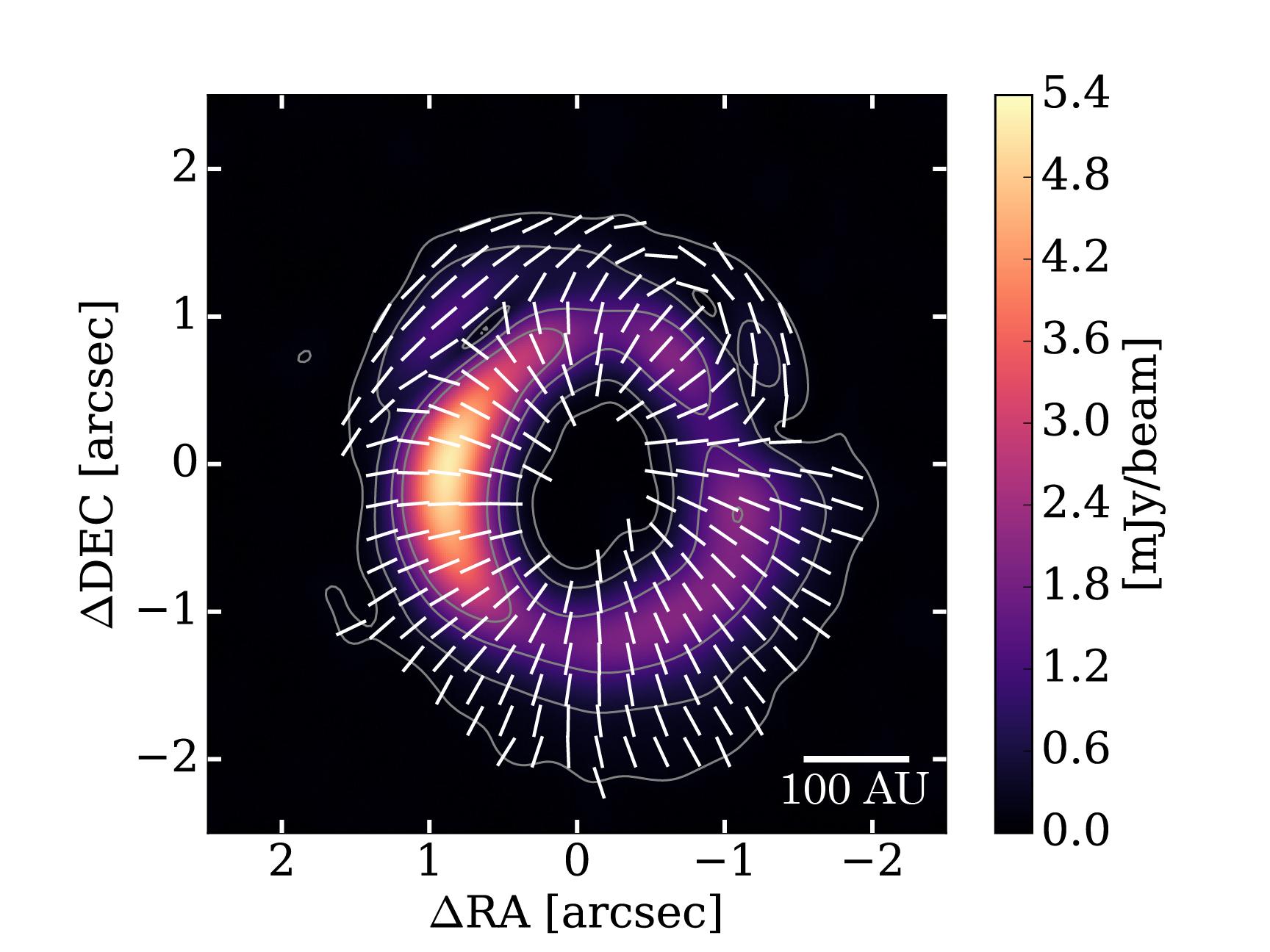 Patrón de polarización alrededor de la joven estrella HD 142527 obtenido por ALMA. Los contornos muestran la intensidad total de las emisiones de polvo y la imagen a colores muestra la intensidad de las emisiones polarizadas. Las barras blancas muestran la dirección de la polarización. Créditos: ALMA (ESO/NAOJ/NRAO), Kataoka et al.