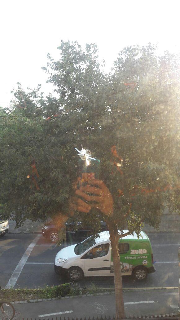 Vidrio quebrado producto de un disparo de postones| Comunicado de Prensa