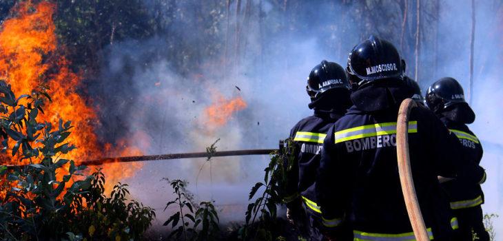 Incendio forestal en Paredones ha arrasado con más de 2.700 hectáreas