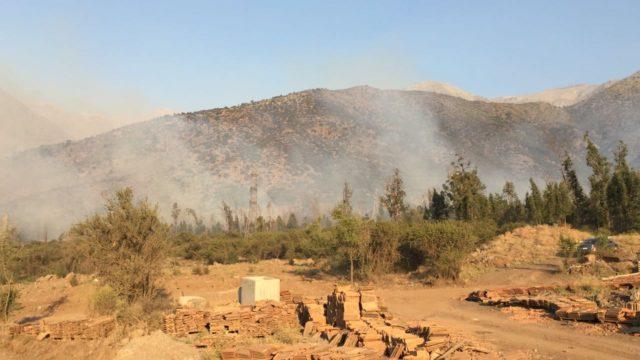 Incendio forestal en sector de Macul Alto: llamas están a solo 50 metros de las viviendas