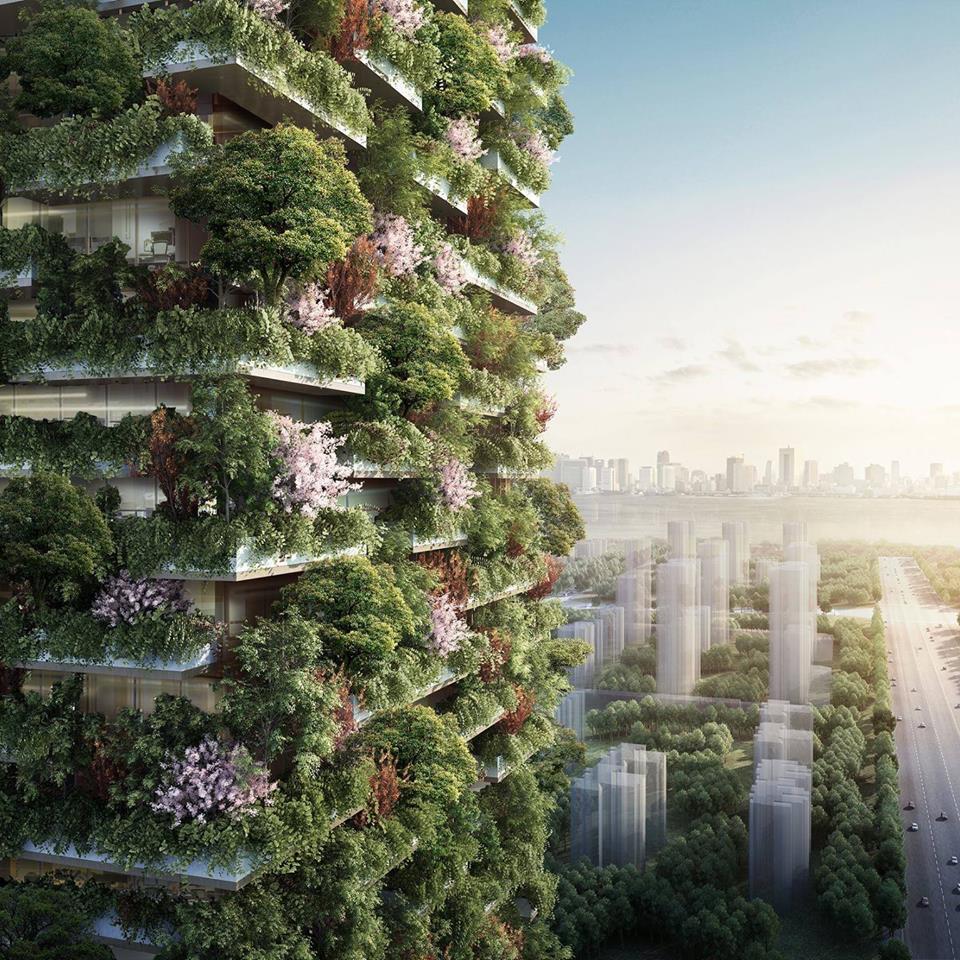 China crea bosque verticales en torres para combatir la contaminación