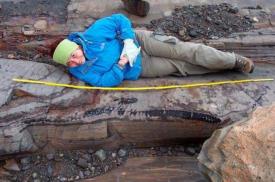 Científica chilena halla valiosísimo fósil de ictiosaurio en Torres del Paine